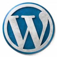 site web vitrine WordPress Orléans